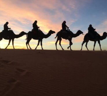 5 Days from Ouarzazate to Marrakech via Sahara desert